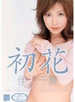 初花-hatsuhana- 伊沢千夏