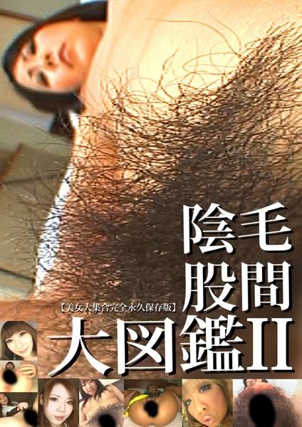 股間陰毛大図鑑2 パッケージ