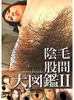 股間陰毛大図鑑2 ダウンロード