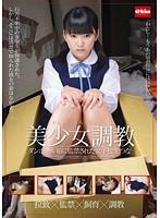 美少女調教 ダンボール箱に監禁された女子校生つな ダウンロード