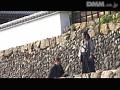 くノ一忍法伝 妖獣雷光 〜女陰薄愛抄〜sample9