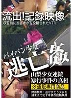 流出!記録映像パイパン少女逃亡姦 逃げまどう少女を捕まえて犯す卑劣な投稿映像 ダウンロード