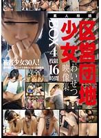 区営団地少女わいせつ映像集BOX 16時間