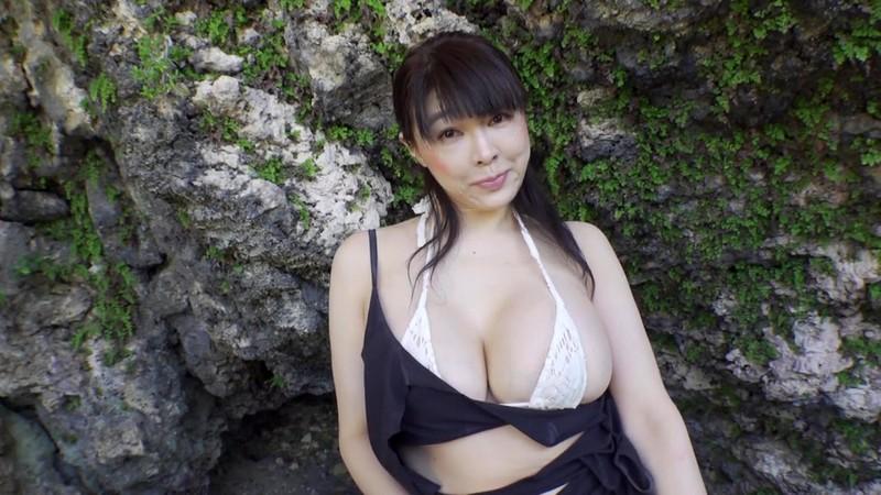 プライベート・レッスン ~巨乳女教師の誘惑~ 松坂南