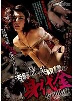 財閥令嬢誘拐蹂躙迷宮入り事件 汚辱監禁奴隷の身代金 小口田桂子 ダウンロード