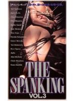 THE SPANKING Vol.3