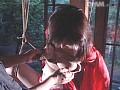 (51vs533)[VS-533] 奴隷女教師 淫獣の生贄 中澤いずみ ダウンロード 4