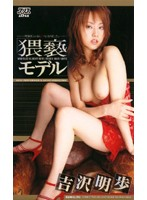 猥褻モデル 吉沢明歩