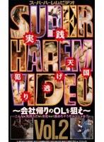 スーパーハーレムビデオ Vol.2 〜会社帰りのOLを狙え〜 ダウンロード