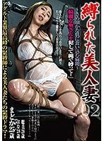 縛られた美人妻 02 ダウンロード