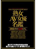 菊池エリ 平成大不況の日本を大きな愛で満たす 「熟女AV女優名鑑」 深情けの女神たち