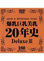 爆乳巨乳美乳20年史 Deluxe 3 ダウンロード