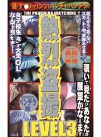 熱烈盗撮 LEVEL3 ダウンロード