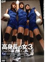 高身長の女 3 Over 170cm Triple Ladies ダウンロード