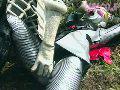 淫獣大戦KITORA 1 死神戦士キラーボーンsample15