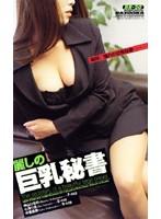 麗しの巨乳秘書 ダウンロード