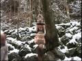 (86axdvd00212r)[AXDVD-212] 究極マゾ妻肉奴隷 野外雪責め針貫通 ダウンロード 18