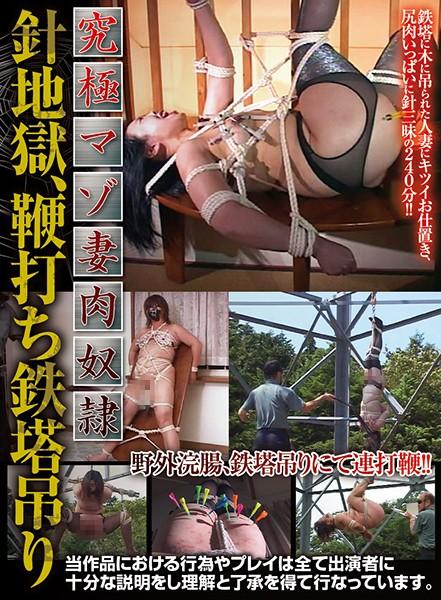 (86axdvd00216r)[AXDVD-216] 究極マゾ妻肉奴隷 針地獄、鞭打ち鉄塔吊り ダウンロード