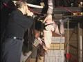 究極マゾ妻肉奴隷 鞭連打、針責め逆さ吊りのサンプル画像 20