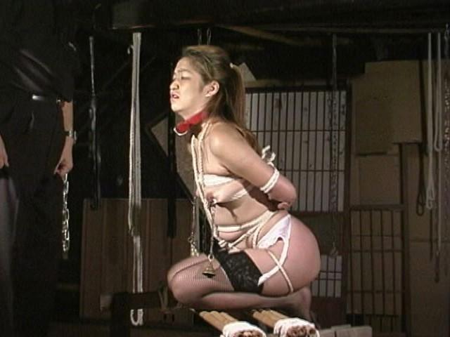 緊縛若妻 鞭打ち水責め天井吊りアナル嬲り