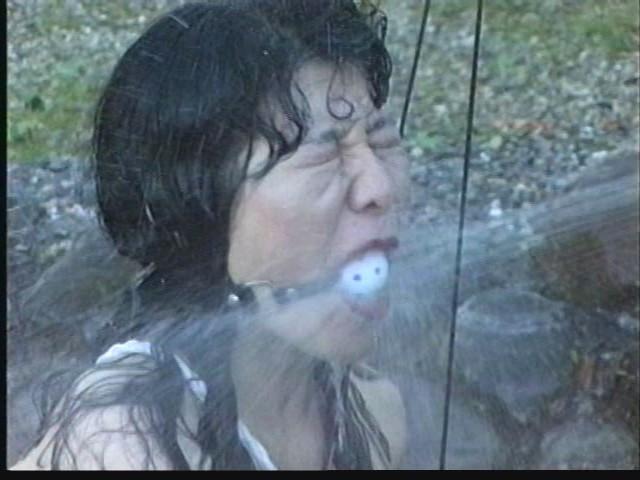 奴●志願妻 鞭打ち・逆さ吊り・吹き矢・水責め 画像20