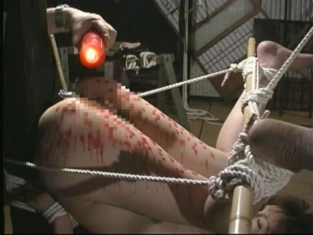 奴●志願妻 鞭打ち・逆さ吊り・吹き矢・水責め 画像3