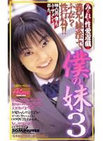 瀬戸秋美 僕の妹 3
