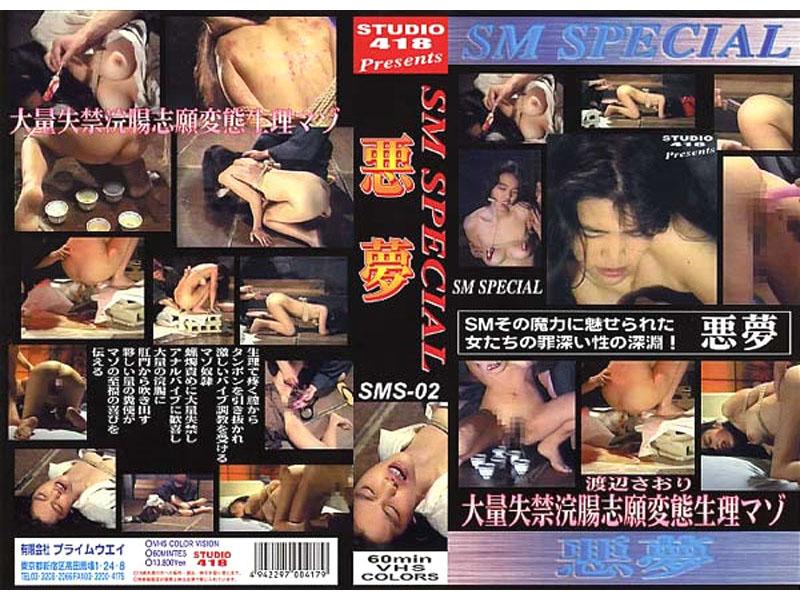SM SPECIAL 2 悪夢