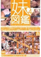妹図鑑4 ダウンロード