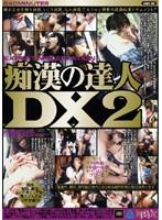 痴漢の達人DX 2 ダウンロード