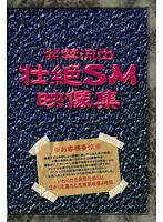 発禁流出 壮絶SM映像集 ダウンロード