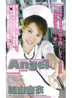 Angel 加山由衣 ダウンロード