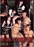 蛇縛の拷問折檻DX3