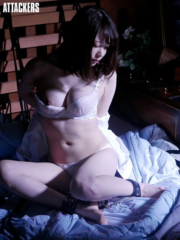 潜入捜査官 敗れた者の掟 新井優香 5枚目