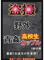 盗撮 野外 青姦○校生カップル 1 ダウンロード