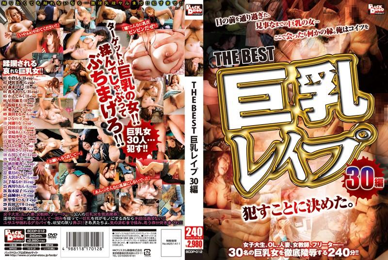 THE BEST 巨乳レイプ 30編