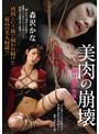 縛り拷問覚醒 美肉の崩壊 森沢かな(bda00027)