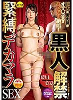 黒人解禁!緊縛デカマラSEX 藍川美夏 ダウンロード