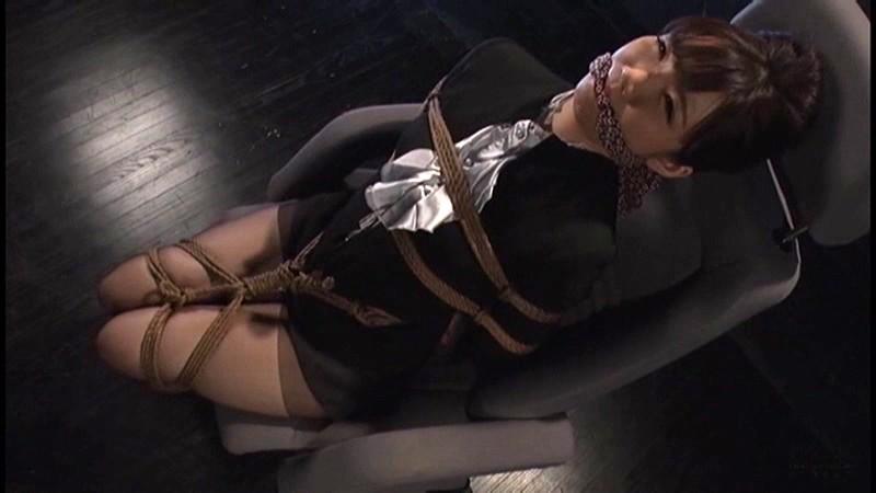 奴隷秘書の系譜 虚妄の肛辱オフィス 佐々木ひなこ 2枚目