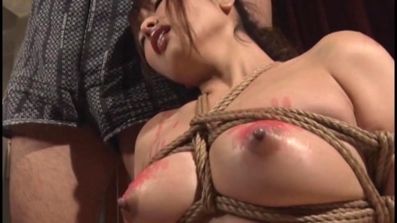 奴隷娼婦に転落した女 鋼鉄の桎梏 新村あかり 19枚目