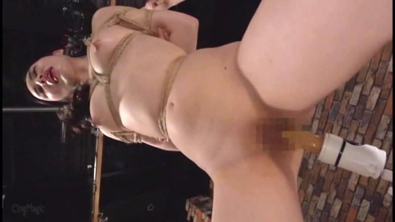 家畜娼婦に転落した女 鞭狂い人妻M覚醒実践講習会 塩見彩 画像7
