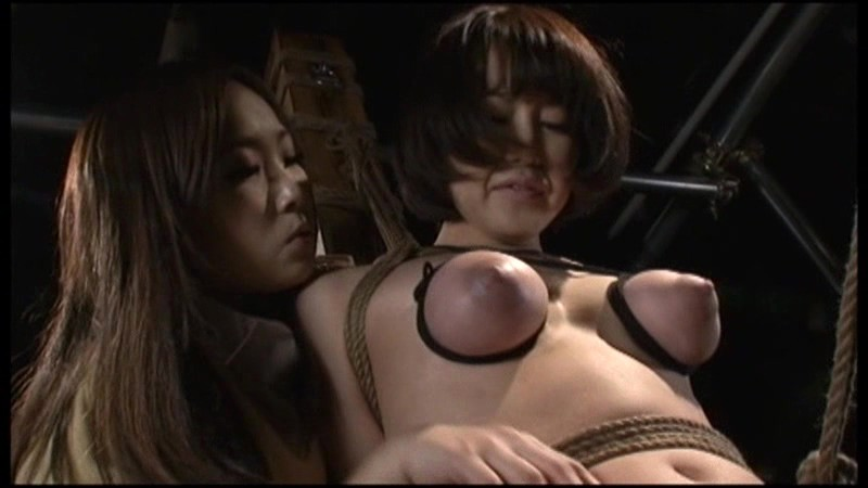 ビクセン総集編8 女に虐め嬲られる女達 画像1