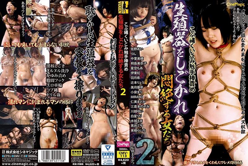 こぶ縄くいこみ触手棒責め 生殖器をしごかれ悶絶する女たち2のパッケージ写真