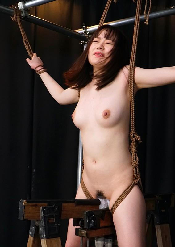 残虐昇天三角木馬 ~悪魔の重力にイキ殺される炎上女体~ 完全撮りおろし!8...のサンプル画像
