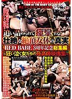 追い詰められて痙攣する 壮絶な絶頂女体の真実 RED BABE3周年記念総集編-狂い泣く女たちの最高峰映像集- ダウンロード