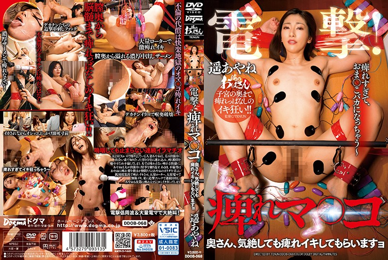 DDOB-068 Shocking! Throbbing Pussies Ma'am, Even If You Pass Out, I'm Going To Keep On Stimulating Your Pussy Until You Cum Ayane Haruka