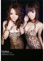 Harlem Di3 LIMITED EDITION 001 ダウンロード