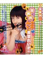 国民的妹 〜アイドル美堂れいか〜 dvdps00161のパッケージ画像