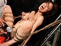 この世で最も残酷な逝き地獄 身動き取れない限界達磨拷問 BLA...sample6