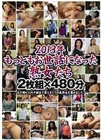 2013年もっともお世話になった熟女たち 480分 ダウンロード
